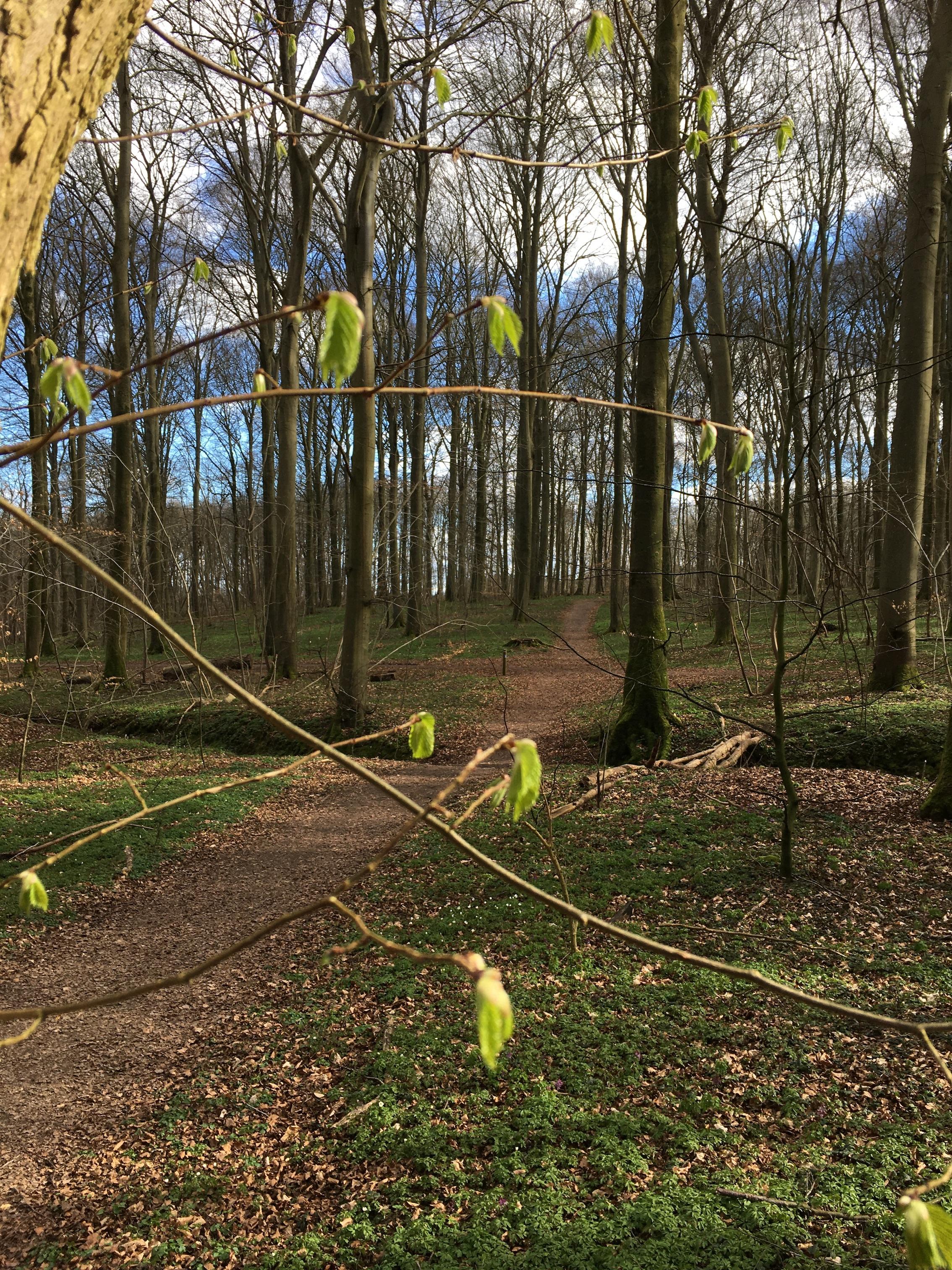 Tag på påsketur i Skovhusvænge